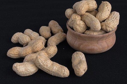 walnut-3430193__340